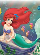 小美人魚 the little mermaid